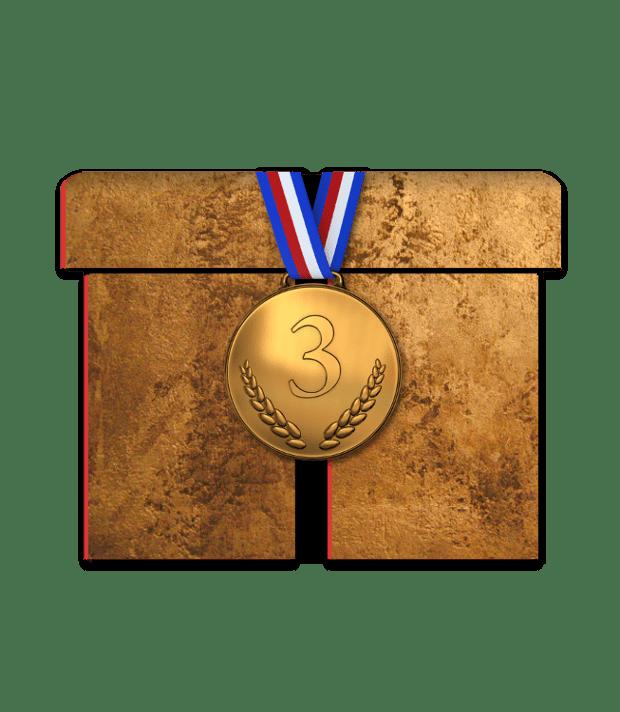 Webbpaket Brons